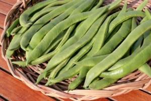 Runner-Beans-1