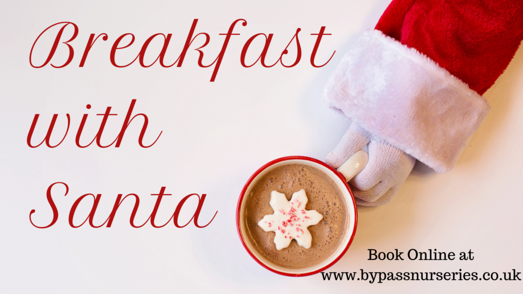 Breakfast-with-Santa-2