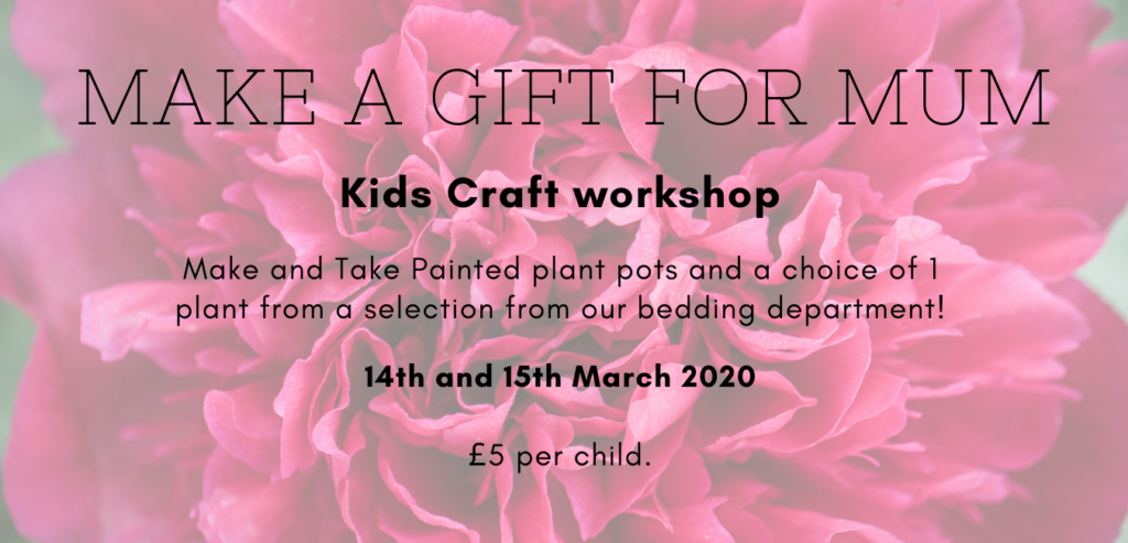 Kids Craft workshop Make and Take Painted plant pots and a choice of 1 plant from a selection from our bedding department! 14th and 15th March 2020 £5 per child. (3)